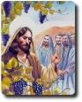 5 domenica di Pasqua  Non rimaniamo senza linfa!
