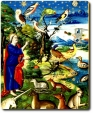 Papa Francesco  Laudato si' – Capitolo 2  «Il Vangelo della creazione»
