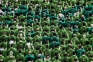8000 parroci in meno in Italia