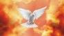 La vita nello Spirito   La pace con Dio, frutto dello Spirito