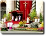 La Pasqua fiorita