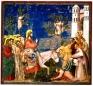 Omelia nella domenica di Passione   «Benedetto colui che viene nel nome del Signore!»