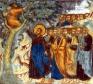 Omelia nella 31 domenica per annum  «Conversione e salvezza»