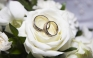 Amoris lætitia   -   Capitolo 4°  L'amore nel matrimonio